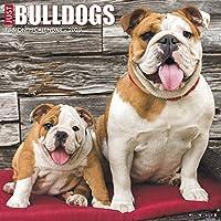 Just Bulldogs 2020 Calendar