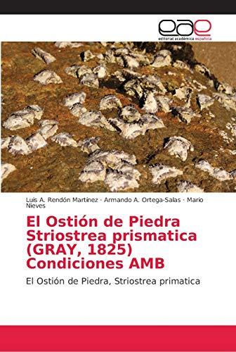 El Ostión de Piedra Striostrea prismatica (GRAY, 1825) Condiciones AMB