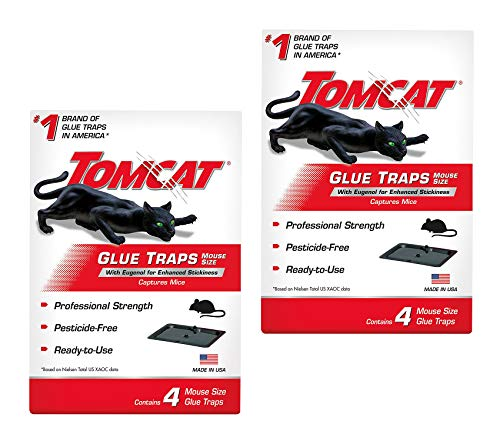 Tomcat Mouse Glue Trap W/Eugenol - 8 Pack