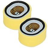 Carkio Filtro de aire Pre-limpiador Combo compatible con Yanmar L100N Diesel Engine 114210-12590 114211-12510, filtro de aire para cortacésped (paquete de 2)