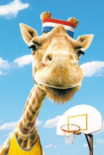 Avanti Karten - Humorkarte Geburtstagskarte Giraffe im Basketball Outfit 94-1037