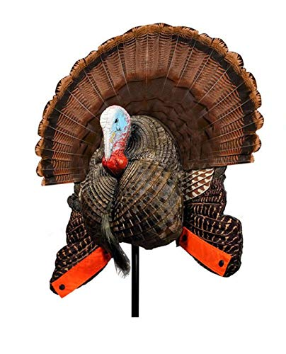 MOJO Outdoors Scoot and Shoot Turkey Decoy - Hunting Accessories, Turkey Hunting, Multi, Model:...