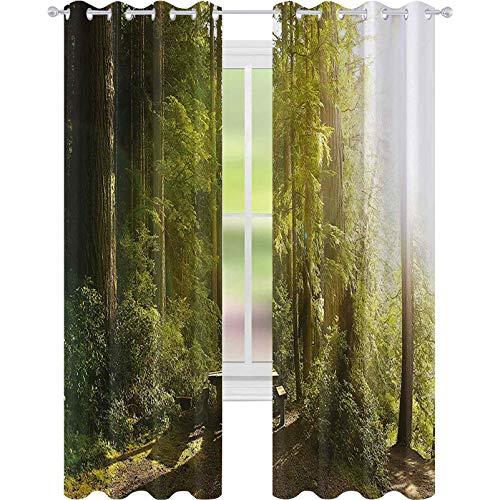 Cortinas opacas para dormitorio, diseño de bosque tropical con banco de madera en el Parque Nacional Olímpico Washington, Estados Unidos, cortina opaca de 52 x 108 para sala de estar, verde amarillo