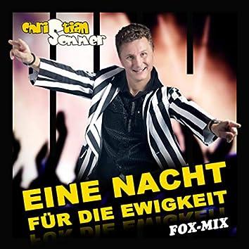 Eine Nacht für die Ewigkeit (Fox-Mix)