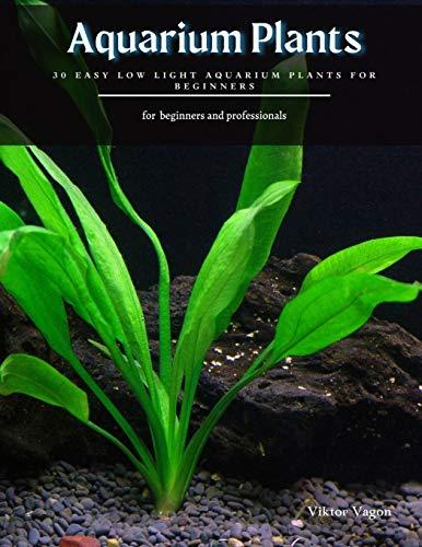 Aquarium Plants: 30 Easy Low Light Aquarium Plants for Beginners