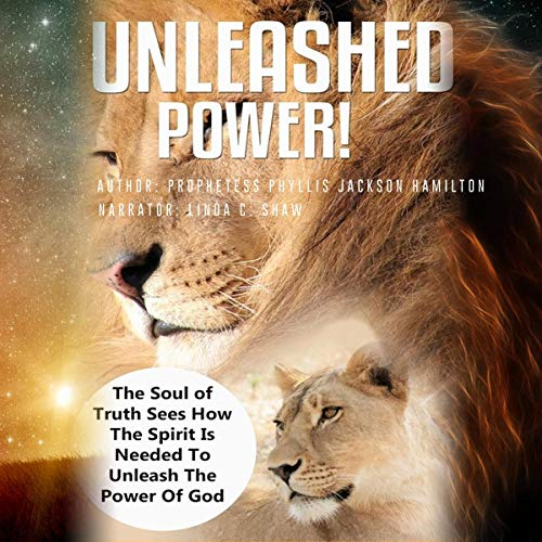 Unleashed Power! cover art