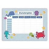 Papierdrachen Stundenplan DIN A5 Block - Motiv Meerestiere - beschreibbar Schule - Terminkalender und Wochenplan -
