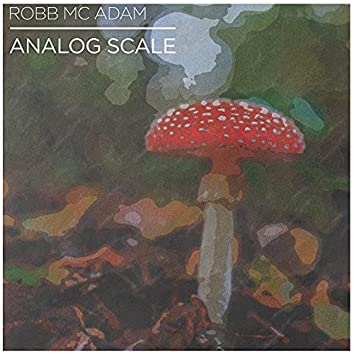 Analog Scale