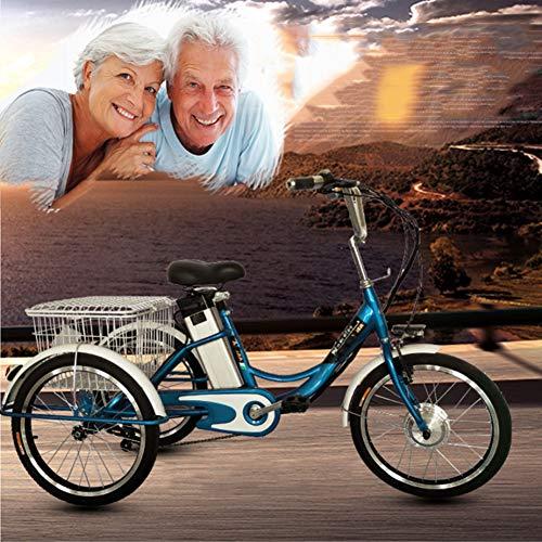 DNNAL Tricycle électrique Adulte, Chariot de Panier de légumes de Loisirs de vélo électrique de Tricycle à 3 Roues de 20
