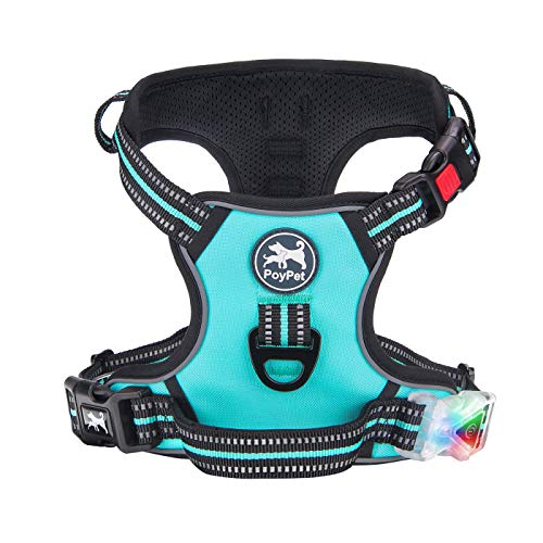 PoyPet LED Illuminated Dog Harness No Pull Reflective Adjustable Pet Vest with Handle for Small Medium Large Dogs(Mint Blue,Small)