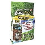 Telebrands Bermuda Grass Seeds - Best Reviews Guide