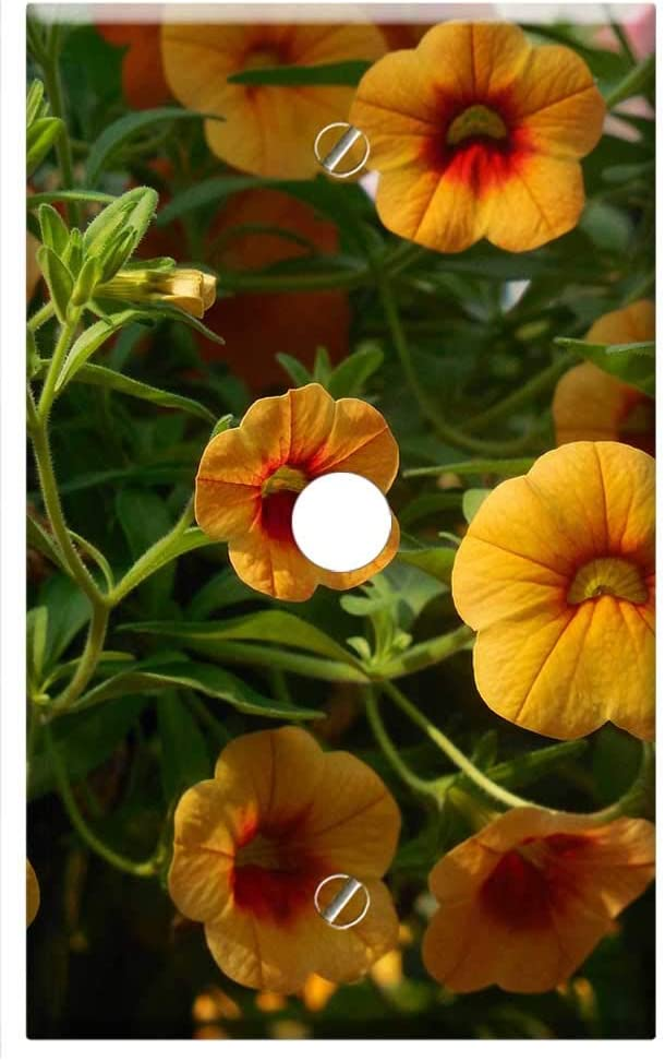 Max 51% OFF Cheap bargain Single Hole Device Telephone Cable Wall Plate Flowers - Cover Gr