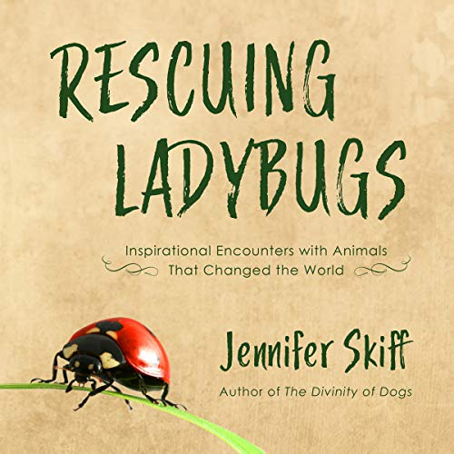 Rescuing Ladybugs audiobook cover art
