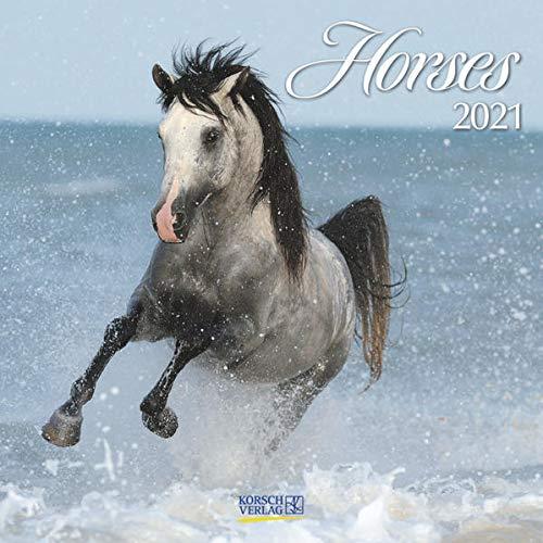 Horses 2021: Broschürenkalender mit Ferienterminen. Pferde und Ponys. 30 x 30 cm