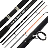 Surf Casting Rods - Best Reviews Guide