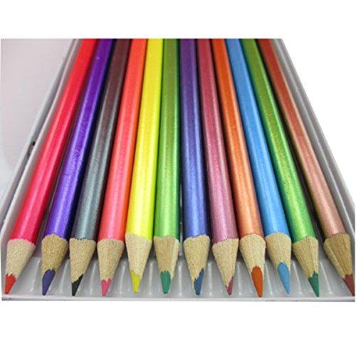 12 Crayons De Couleur Metallic Pencils Set Pour Tout Type De Travail De L'artiste Art Peintures Dessin Artisanat Artistes Kit Photo Canvas Couleurs Assorties Enfants Home School Case Tin Bureau