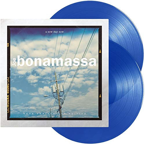 A New Day Now (20Th Anniversary (Vinyl Blue Limited Edt.)