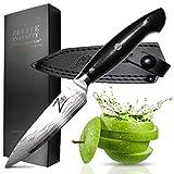 ZELITE INFINITY Coltello per frutta e verdura 11 cm - Serie Executive-Plus - Giapponese Su...