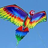 FANZIFAN Cometa,Cometa de Loro 3D Cometas voladoras de una Sola línea con Cola y Mango Cometa para niños Cometas de pájaros voladores Manga de Viento al Aire Libre para Adultos y niños, A