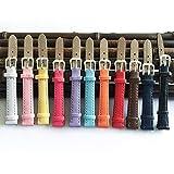 SHIWU Correa de Cuero de 12 mm Correas for Relojes y Correas de Reloj de 12 mm Accesorio Multicolor de Las Mujeres (Band Color : Brown, Band Width : 16mm)