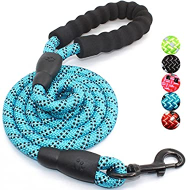 5 FT Strong Dog Leash with Comfortable Padded Handle and Highly Reflective Threads for Medium and Large Dogs (Blue)