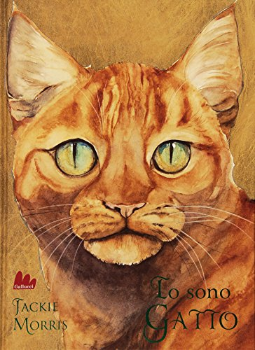 Io sono gatto. Ediz. illustrata