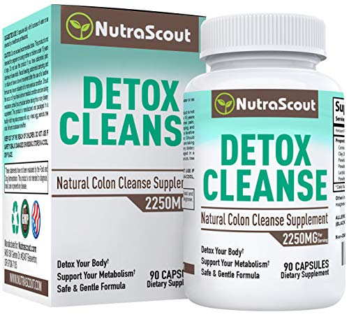 #1 Colon Detox Cleanse | 10-in-1 Gentle & Effective Herbal Body Cleanse with Bentonite, Psyllium, Aloe Vera, Black Walnut & Probiotics | 90 Capsules | Non-GMO Formula