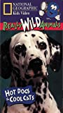 National Geographic's Really Wild Animals: Hot Dogs and Cool Cats [VHS]