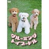グルーミング・トイプードル [DVD]