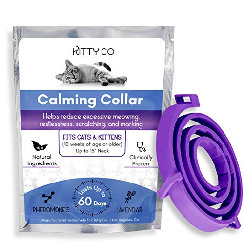 Calming Collar for Cats | Cat Anxiety Relief with Pheromones | Cat Calming Products for Kittens | 60 Day Supply, 1 Collar