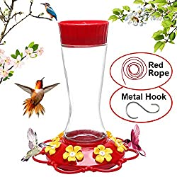 16 Best Hummingbird Feeders of 2020, Reviewed and Rated 6
