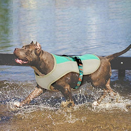 Huangchuxin Tuff Perro de Caza de refrigeración Chaleco arnés del Perrito al Aire más frío Chaleco Reflectante de Seguridad a Prueba de Sol Capa del Animal doméstico de Caza Tamaño: S Huangchuxin