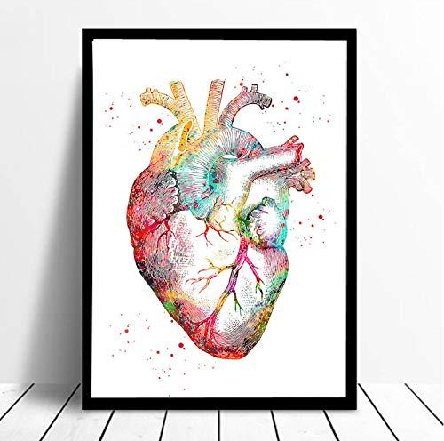 Aquarell Anatomie Herz Wandkunst Leinwand Malerei Poster und Drucke Wandbilder Arzt Klinik Dekor 40x60cm Ohne Rahmen