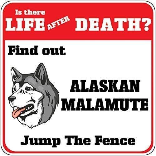DKISEE Cartel de metal de aluminio con diseño de perro Alaskan Malamute Life After Death? Jump Fence Crossing Sign de 30,5 x 45,7 cm