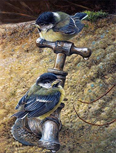 kecoci Rompecabezas para Adultos Rompecabezas de 1000 Piezas Pájaro en el Grifo Rompecabezas de Madera Juguete de Descompresión para Adultos Niños -50x70cm