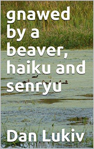 gnawed by a beaver, haiku and senryu (English Edition)