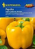 Paprikasamen - Paprika Yellow California Wonder von Kiepenkerl