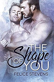 The Shape of You by [Felice Stevens]
