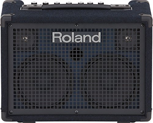 Cheap Roland Battery-Powered Stereo Keyboard Amplifier, 30 watt (15W + 15W) (KC-220)