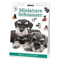THE DOG 2021年 卓上カレンダー (ミニチュア・シュナウザー)
