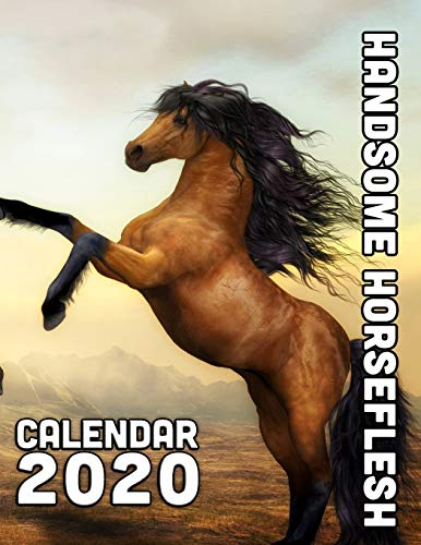 Handsome Horseflesh Calendar 2020: 14 Month Desk Calendar for Lovers of Our Equine Friends and Partners