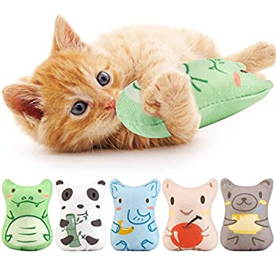 Dorakitten Cat Catnip Toys, 5PCS Plush Interactive Cat Toys, Cat Chew Toy Bite Resistant Catnip Filled Kitten Toy for Cat Kitten Teeth Cleaning Playing Chewing