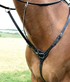 Shires Salisbury 3 Point Breastplate-Black/Silver Full