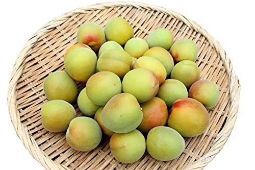 無農薬 南高梅 樹熟梅(きじゅくうめ) 3kg 和歌山産 梅干し 梅酒・梅ジュース用 青梅