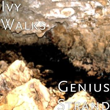 Genius Strand