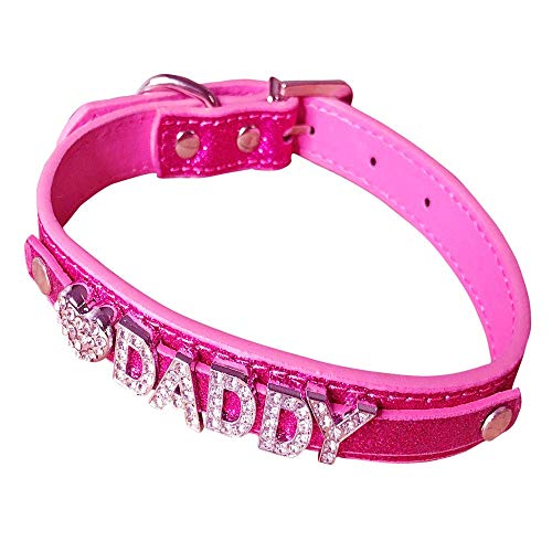 Daddy Dom DDLG/ABDL Leather Collar (rose red), Rose Red, Size 2.0