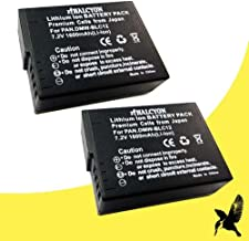 Two Halcyon 1600 mAH Lithium Ion Replacement Battery for Leica V-LUX 4 Digital Camera and LEICA BP-DC 12