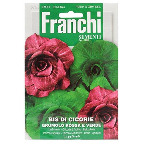 Seeds of Italy Franchi Semis de chicorée