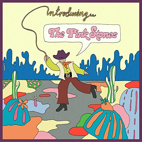 Album Art for Introducing...the Pink Stones by The Pink Stones