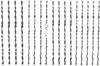 【ZXY-15】波ラインネイルシール シルバー
